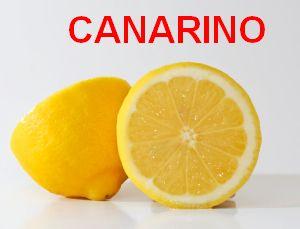 Canarino, la bevanda digestiva