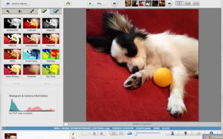 Installare Picasa su Linux