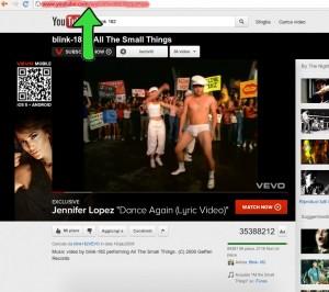 Salvare video Youtube 1