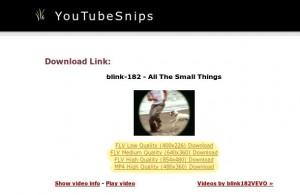 Salvare video Youtube 3